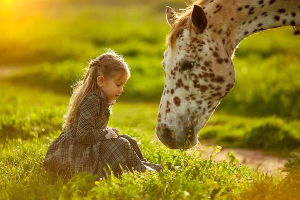 Side view of little girl in dress on green meadow with beautiful spotty horse in bright sunshine
